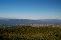 Mt. Diablo State Park - Walnut Creek from Deer Flat Rd.