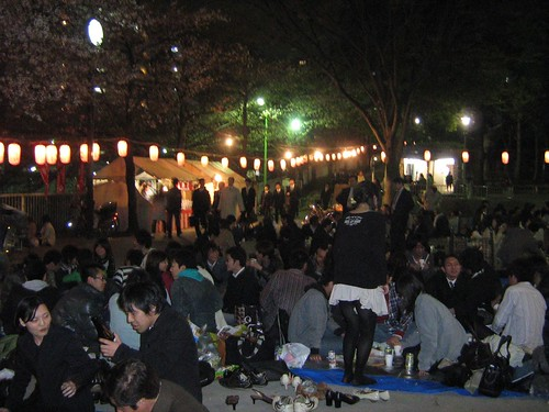 Edogawa Park at Night