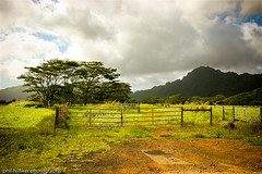 gate and clouds ([phil h]) Tags: green 20d topv111 clouds eos hawaii gate sigma fv5 kauai hi gardenisland 1850mm img7810lredexp