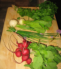 Veggies from the first delivery of CSA from Red Fire Farm