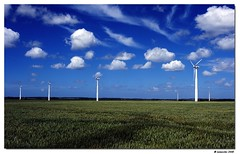 Energetic green field (Lionoche) Tags: windmill greenenergy olienne parcolien danishwindfarm
