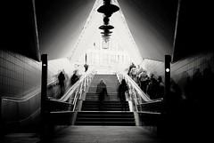 SHADOWS (besimo) Tags: blackandwhite stairs photoshop subway grey nikon shadows ubahn bahn bielefeld lightroom movingstaircase langzeitbelichtung 35mmf20 mehrfachbelichtung nikond80 projekt365 besimmazhiqi alexeytitarenko