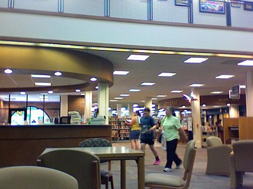fulmer public library
