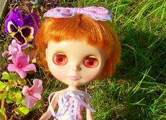 Sweet little flower lover