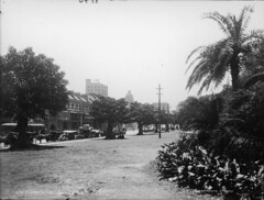 Elizabeth Street from Hyde Park, Sydney
