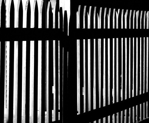 Day 27 - Black and White Fence