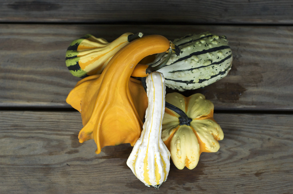 gourds by cinnamonster, on Flickr