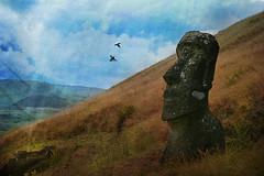 Watcher (iko) Tags: 15fav bird 510fav island statues ile ciel moai easterisland oiseau tranquilit colline watcher rapanui isladepascua ocanie mywinners theunforgettablepictures iledepques