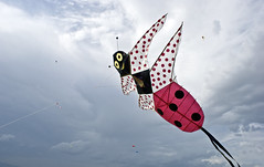 Coccinella Volante (Piero Gentili) Tags: sky kite cute canon giant fly flying nice mare shot best kites cielo canona1 gigante piero 20051 vola aquiloni volare coccinella aquilone pierpaolo gentili lancio lanciare sonyalpha350 piero20051 pierogentili gentilipiero gentiligentili pierpaologentili gentilipierpaolo