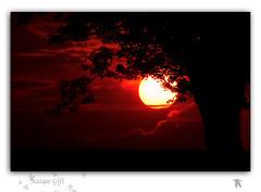 "Nature Gift  ""Retrospective"" (Renald Bourque) Tags: sunset sun sunlight canada nature sunrise soleil bravo quebec gift lefion mywinners impressedbeauty naturethroughthelens"