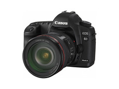 camera canon 10 fav20 5d canon5d fav10 fav25