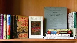 Shelf of Books on South America