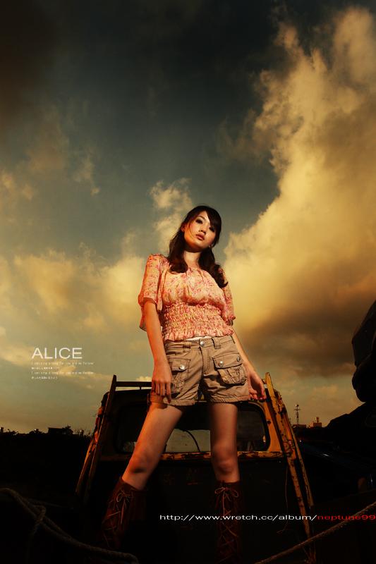 [ A L I C E ]