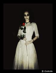 La novia cadver (Halloween I) (fenderboyz) Tags: halloween apocalypse rosa valladolid decadence roja novia cadaver