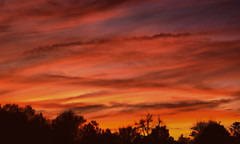 North Carolina Sunset (Moments Captured In Time) Tags: pictures sunset sun nature colors beautiful clouds photography nc pretty north carolina lovely dslr hdr sonyalphadslra100 jeanettehuston