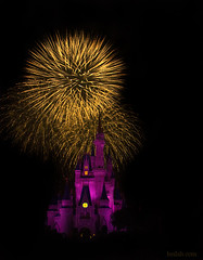 Some Magic (Heilah Alnasser) Tags: castle orlando nikon purple fireworks disney fl cinderella nikkor wdw magickingdom 1870 d300 heilah heilahn
