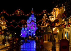 Disney - Christmas on Main Street USA (Explored) (Express Monorail) Tags: christmas longexposure travel walter vacation usa beautiful america wonder geotagged fun psp evening interestingness orlando nikon colorful purple florida availablelight magic tripod dream wed elias garland disney mickey explore disneyworld fantasy mickeymouse imagine theme wish orangecounty wdw waltdisneyworld walt wreaths magical kissimmee themepark magickingdom waltdisney mainstreetusa wetstreet d300 wdi lakebuenavista imagineering cinderellacastle mickeysverymerrychristmasparty disneyprincesses flickrexplore waltdisneyworldresort wetreflection dreamlights explored disneypictures disneyparks disneyafterdark disneypics expressmonorail disneyphotos paintshopprophotox2 disneyphotochallenge disneyphotochallengewinner geo:lon=81581168 joepenniston disneyphotography disneyimages geo:lat=28417468
