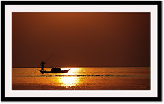 Riding on the sun (Z.Faisal) Tags: life sunset red sun silhouette river boat horizon lifestyle sail sailor bangladesh boatman bangla faisal padma zamir munshiganj zamiruddin zamiruddinfaisal padmaresort lohajang zfaisal