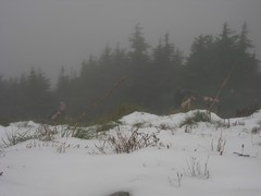 Rich and MtnSun near the summit
