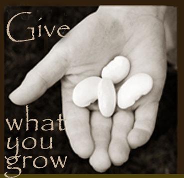 givewhatyougrow