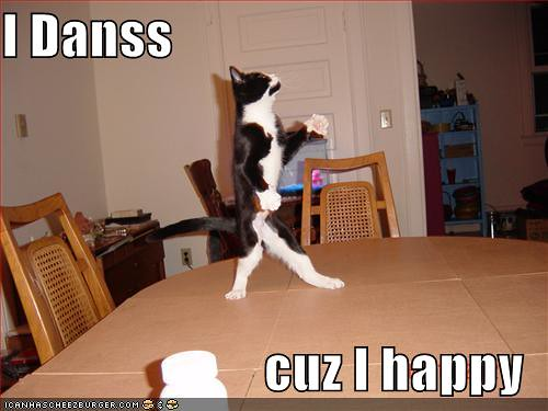 funny-pictures-dancing-cat by ciaranmcfadden.