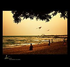 Memories (s@mar) Tags: winter beach children memories kites kuwait flyingkites mywinners canon450d flickrgettyimages