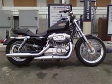 Harley-Davidson - Sportster 883 - anno 2009