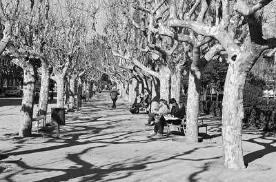 Park 02