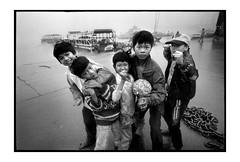 bad boy (fly) Tags: film blackwhite asia vietnam fly simonkolton