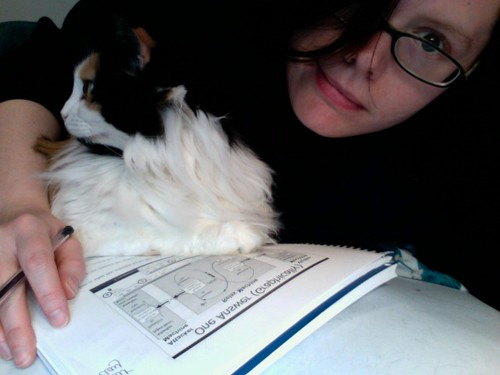 Hmm, guess I'm not allowed to study...