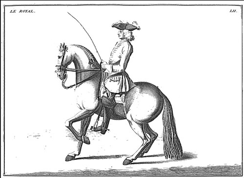 11-Recular el caballo con el cabezal