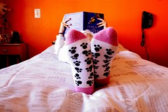 book and socks! (Honey Pie!) Tags: colors socks cores book colores explore meia livro 52weeks explored 252weeks