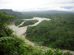 Land grabs by technicality in the Amazon