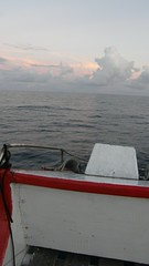 84.在船首俯望大海