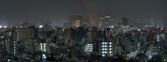 Tokyo 981 (tokyoform) Tags: city urban panorama japan skyline architecture night dark 350d japanese tokyo noche asia cityscape skyscrapers nacht ciudad tquio stadt noite  tokyotower  japo nuit japon  ville malam tokio  stadtbild paisajeurbano japn       japonya  nhtbn m paysageurbain jongkind             chrisjongkind   tokyoform