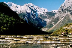 China Travel - Jade Dragon Snow Mountain, Yunnan  (Lao Wu Zei) Tags: china travel mountain snow photos yunnan favourite  1000views     jadedragon
