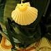 Pilgrim rucksack