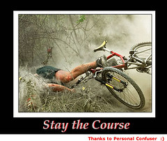 bush_Stay_the_Course