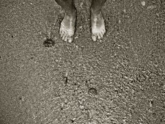 More and More (FotoRita [Allstar maniac]) Tags: life bw italy white black feet beach water digital lumix acqua myfavourites calabria spiaggia piedi moreandmore byfotorita 123bw bagnaracalabra