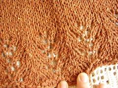 P1010009 (crochet-along) Tags: knitting towels sugarncream lacehemtopping