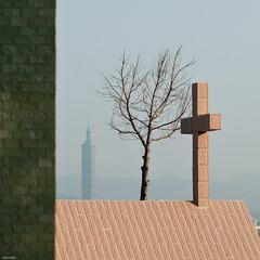 highest :)? (YENTHEN) Tags: tree cross taiwan 101 taipei value nikkor 台灣 台北 50mmf18 台北101 yenthen taiwanshighrises