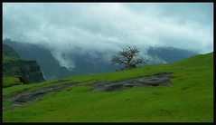 The best thing one can do when it's raining is to let it rain - Henry Wadsworth Longfellow (flickrohit) Tags: india trek maharashtra rohit thepca rohitgowaikar nanaghat