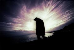hypnos (TommyOshima) Tags: sky color silhouette book xprocess kodak voigtlander exhibition f45 infrared konica naniwacolorkitn 15mm swh eir selfdeveloped kinako superwideheliar thanatos hexarrf tanatosapocrypha  kinakokocteau voiigtlander
