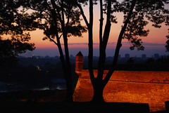 Belgrade Fortress after sunset (Speck in Time) Tags: sunset tree silhouette night nikon serbia belgrade fortress beograd danube confluence sava srbija noediting usce kalemegdan dunav d80 aplusphoto