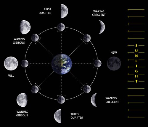 lunar phases  diagram