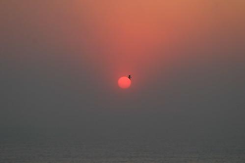 sylmar fire sunrise