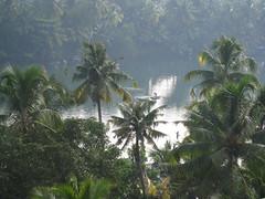 View from ashram room - Kerela