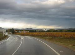 IMG_0018 Carretera de Pals (crazysw) Tags: pals vineyards emporda viñedos