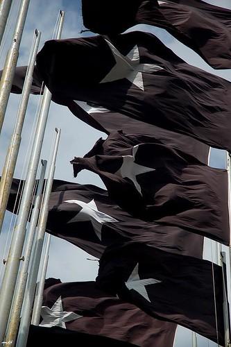 黑色五星旗