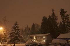 another snowy night (Rusty O.P. ) Tags: seattle wood winter storm tree canon 350d washington woods northwest noflash oldschool canon350d wa pugetsound suv westcoast lynnwood canonrebelxt seattlewa saywa snohomishcountywa lynnwoodwa washingtonpugetsound tokina1116mmf28